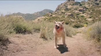 Yahoo! Sports Fantasy Football TV Spot, 'Wolf' - Thumbnail 3