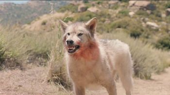 Yahoo! Sports Fantasy Football TV Spot, 'Wolf' - Thumbnail 6