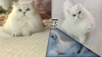 Fancy Feast TV Spot, 'Delightful: Savory Centers' - Thumbnail 2