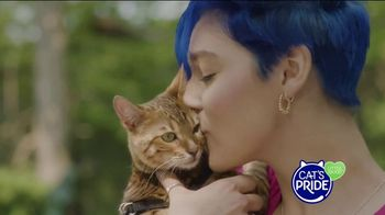 Cat's Pride TV Spot, 'Helping More Cats Find Forever Homes' - Thumbnail 8
