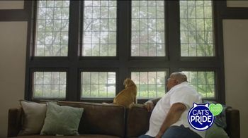 Cat's Pride TV Spot, 'Helping More Cats Find Forever Homes' - Thumbnail 2