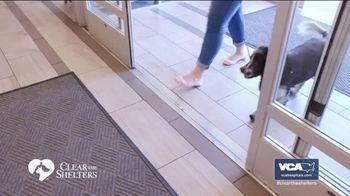 VCA Animal Hospitals TV Spot, 'Forever Homes' - Thumbnail 7