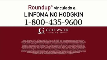 Goldwater Law Firm TV Spot, 'Atención: Linfoma' [Spanish] - Thumbnail 6