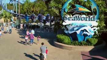 SeaWorld End of Summer Sale TV Spot, 'Amazing Happens: Single-Day Tickets and Fun Card' - Thumbnail 3