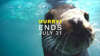 SeaWorld End of Summer Sale TV Spot, 'Amazing Happens: Single-Day Tickets and Fun Card' - Thumbnail 7