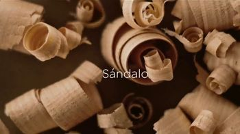 Glade Cashmere Woods TV Spot, 'Florecer' [Spanish] - Thumbnail 3