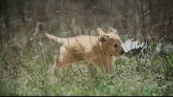 Blue Buffalo BLUE Wilderness TV Spot, 'Feed the Wolf' - Thumbnail 4