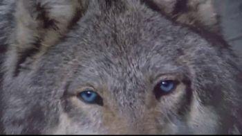 Blue Buffalo BLUE Wilderness TV Spot, 'Feed the Wolf' - Thumbnail 7