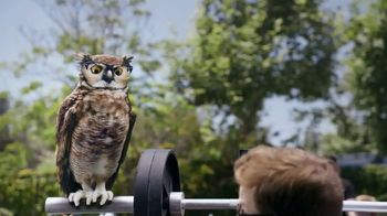 America's Best Contacts and Eyeglasses TV Spot, 'Workout: NeverBlue' - Thumbnail 2