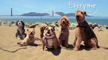 DOGTV TV Spot, 'Unleashed' - Thumbnail 4