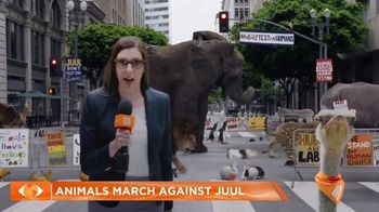 Truth TV Spot, 'The March Against JUUL: Tested on Humans' Featuring Doug the Pug - Thumbnail 2