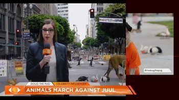 Truth TV Spot, 'The March Against JUUL: Tested on Humans' Featuring Doug the Pug - Thumbnail 6
