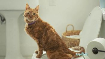 Angel Soft With Fresh Lavender TV Spot, 'Cat' - Thumbnail 5