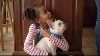 Sparkle Towels TV Spot, 'Puppies Girl' - Thumbnail 5