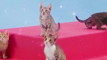 Rainbow Butterfly Unicorn Kitty TV Spot, 'Fans Everywhere Are Celebrating' - Thumbnail 2