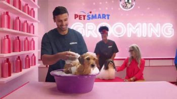 PetSmart TV Spot, 'Anything for Pets: Hotel, Training, Grooming, Day Camp' - Thumbnail 4