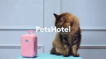PetSmart TV Spot, 'Anything for Pets: Hotel, Training, Grooming, Day Camp' - Thumbnail 6