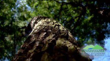 Pennsylvania Great Outdoors Visitors Bureau TV Spot, 'Autumn Adventures: Autumn Leaf Festival' - Thumbnail 3