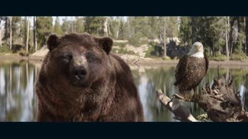 2022 Kia Sorento TV Spot, 'The Bear and the Eagle' Song by The Heavy [T1]