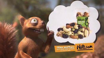 Nuts.com TV Spot, 'Danger Squirrel'