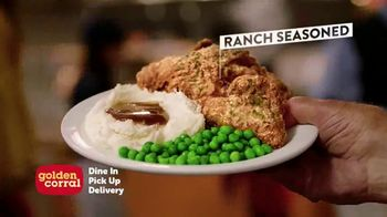 Golden Corral TV Spot, 'Fried Chicken for All'