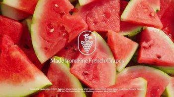 CÎROC Summer Watermelon TV Spot, 'Back This Summer' - Thumbnail 2