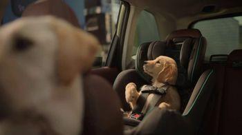2022 Subaru Forester TV Spot, 'Dog Tested: Honk' [T2] - Thumbnail 5