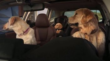 2022 Subaru Forester TV Spot, 'Dog Tested: Honk' [T2] - Thumbnail 6