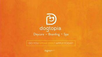 Dogtopia TV Spot, 'We Stop at Nothing' - Thumbnail 7