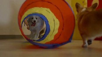 Dogtopia TV Spot, 'We Stop at Nothing' - Thumbnail 3