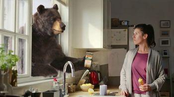 Robitussin Honey Cough + Chest Congestion DM TV Spot, 'Window Bear: Elderberry'