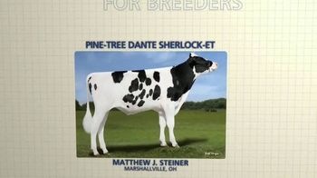 Holstein Marketplace Sires TV Spot, 'Directly From Breeders' - Thumbnail 6