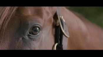 Claiborne Farm TV Spot, 'New for 2022: Performer'
