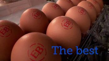 Eggland's Best TV Spot, 'More Delicious, Superior Nutrition' - Thumbnail 2