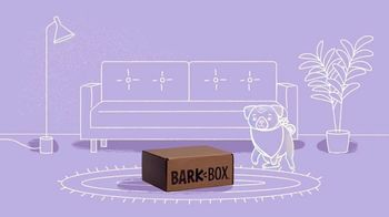 BarkBox TV Spot, 'A Passport to a Whole New World: Halloween' - Thumbnail 3