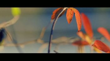 In Touch Ministries TV Spot, 'Freedom: Purpose' - Thumbnail 5