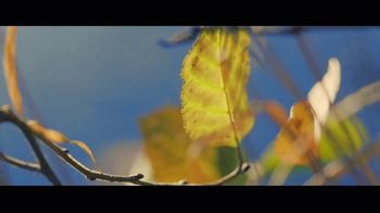 In Touch Ministries TV Spot, 'Freedom: Purpose' - Thumbnail 8