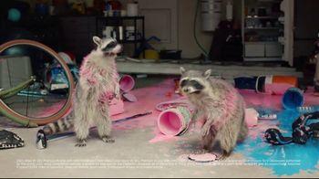 Volkswagen TV Spot, 'Raccoons: SUVs' [T2] - 472 commercial airings