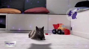 A Much Calmer Cat thumbnail