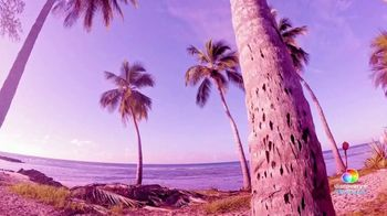 Discovery+ TV Spot, 'Love in Paradise: The Caribbean, A 90 Day Story'
