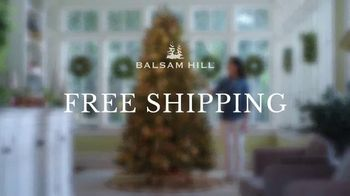 Balsam Hill TV Spot, 'Fill Your Home With the Joy of the Season' - Thumbnail 9