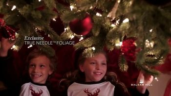 Balsam Hill TV Spot, 'Fill Your Home With the Joy of the Season' - Thumbnail 5