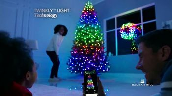 Balsam Hill TV Spot, 'Fill Your Home With the Joy of the Season' - Thumbnail 7