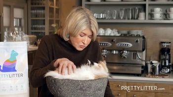 PrettyLitter TV Spot, 'Always Been a Cat Lover' Featuring Martha Stewart - Thumbnail 10