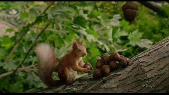 Disney+ TV Spot, 'Flora & Ulysses' - Thumbnail 3