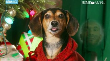 BarkBox Home Alone Box TV Spot, 'Holidays: Spoil the Kevin in Your Life' - Thumbnail 3