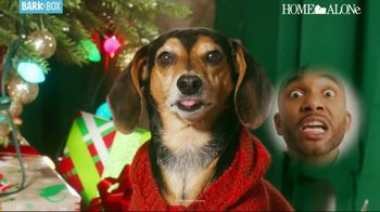 BarkBox Home Alone Box TV Spot, 'Holidays: Spoil the Kevin in Your Life' - Thumbnail 4