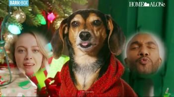 BarkBox Home Alone Box TV Spot, 'Holidays: Spoil the Kevin in Your Life' - Thumbnail 9