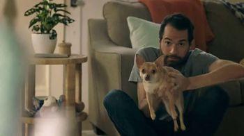 Bissell Pet Stain Eraser Powerbrush TV Spot, 'Always Ready' - Thumbnail 2