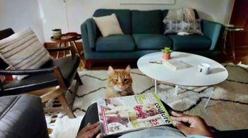 Fresh Step Clean Paws TV Spot, 'Cleaner Beans' - Thumbnail 4